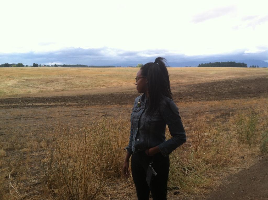 an Alfalfa Field